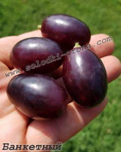 виноград Банкетний