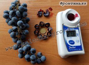 виноград Фронтін'як