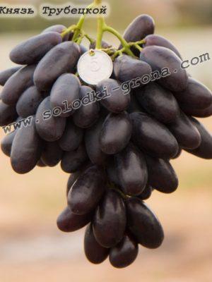 виноград Князь Трубецький