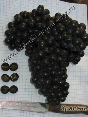 виноград Красень (кишмиш)